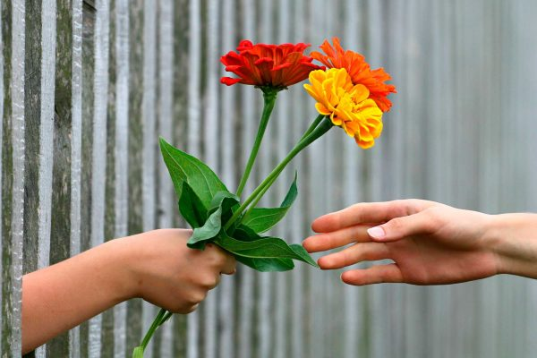 Hoy hay un regalo para ti esperándote en un jardín