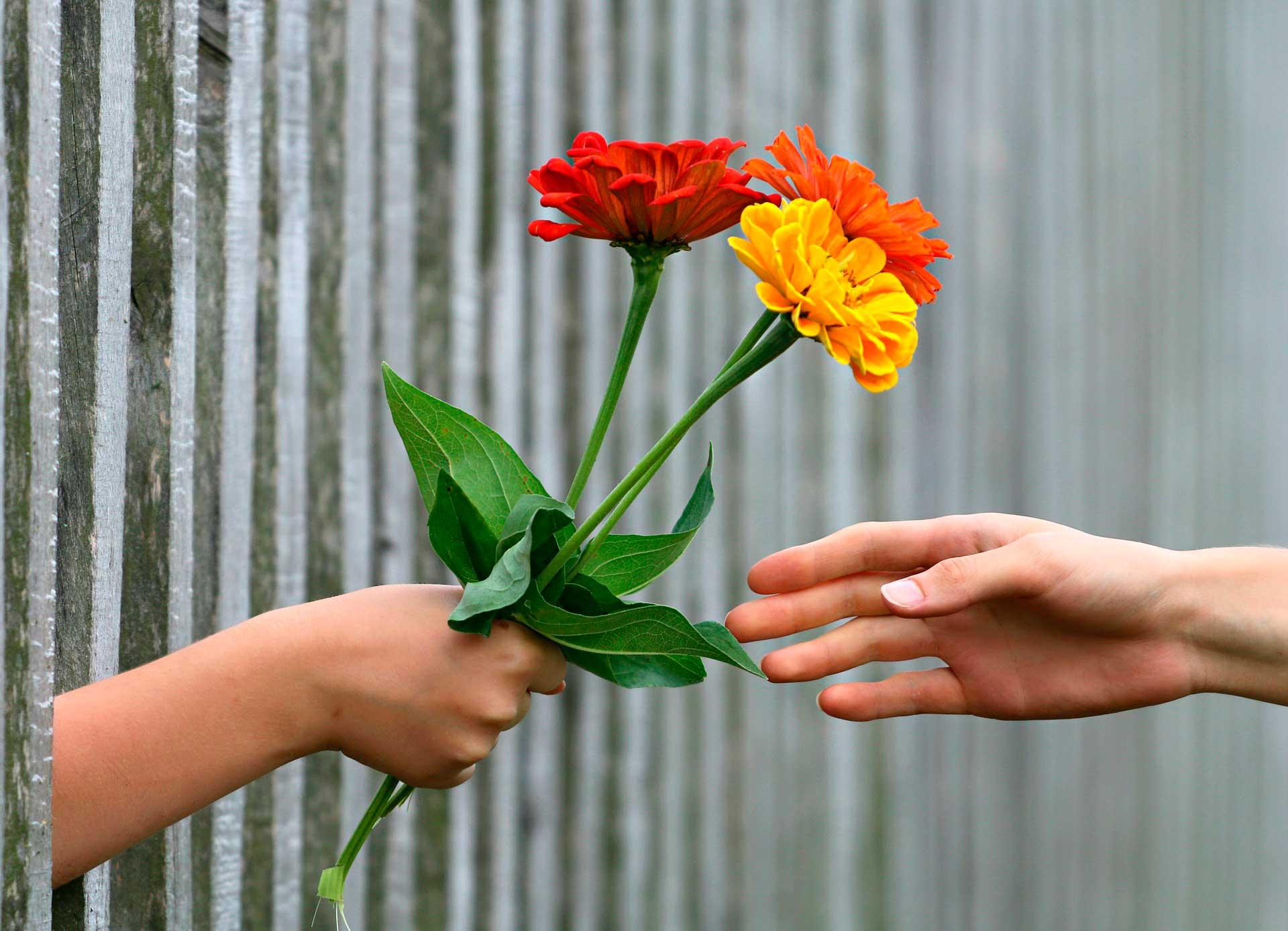 hoy-hay-un-regalo-para-ti-esperandote-en-un-jardin-el-salto-de-consciencia